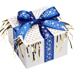 Blue Snowflake Cookie Gift Box with Ribbon